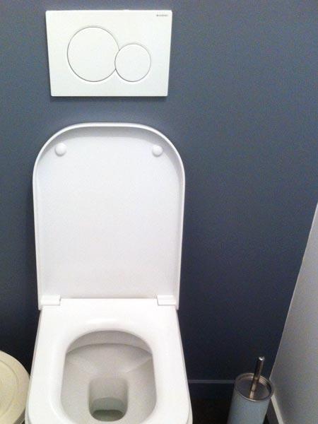 pose d'un WC suspendu à la croix rousse